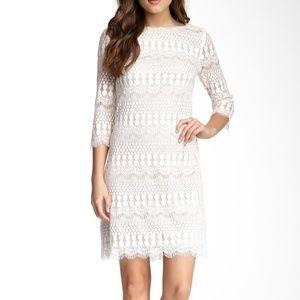 Eliza J lace sheath dress white